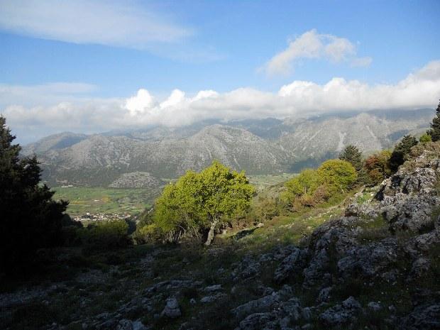 Ausblick in das grüne Tal