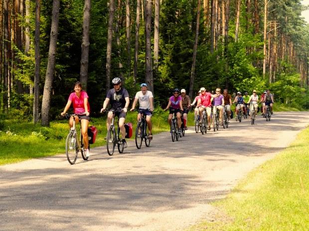 Die Truppe fährt durch einen Wald