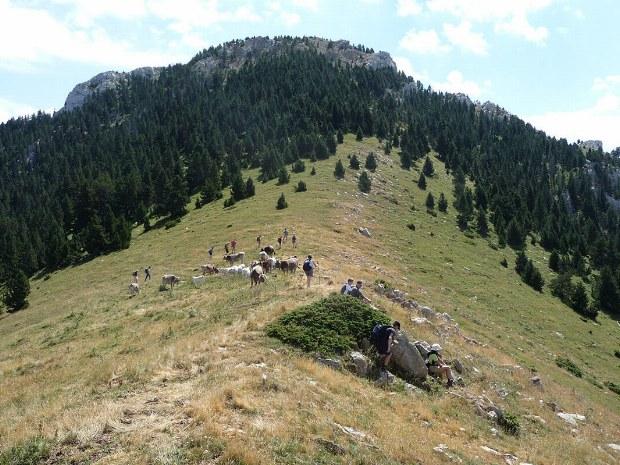Aussicht auf den Gipfel