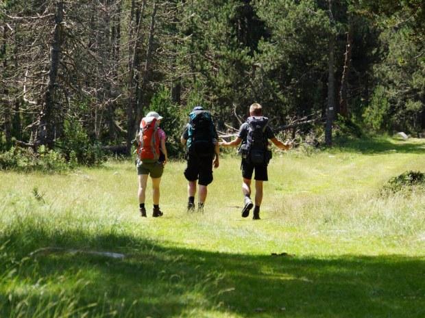 Wandergruppe genießt die Natur