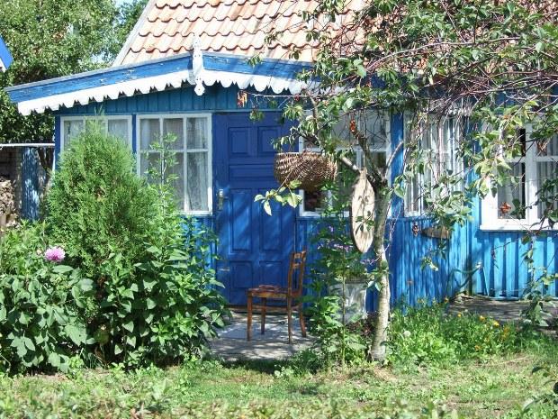 Kleines blaues Holzhaus in einem grünen Garten