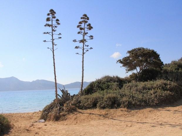 Kleiner Strand in den kleinen Kykladen