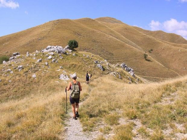Wanderer mit Stock und Hut