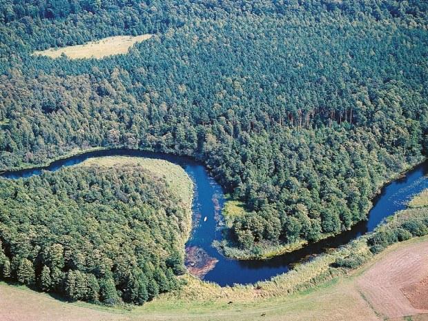 Der Fluss schlängelt sich durch die Wälder der Masuren