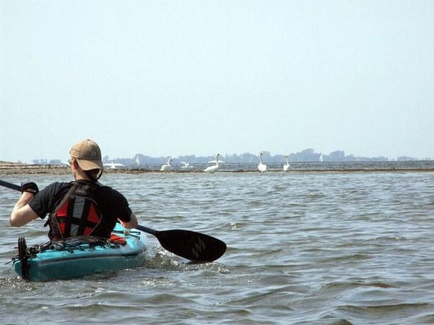 Seekajakfahrer im Solokajak auf dem Wasser