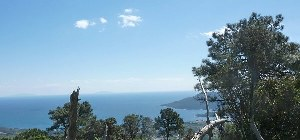 Die Natur auf der Insel Elba