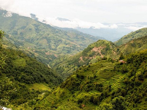 Blick über die Reisterassen im Himalaya