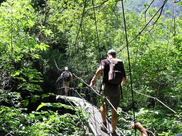 Die Brücke führt in den Wald
