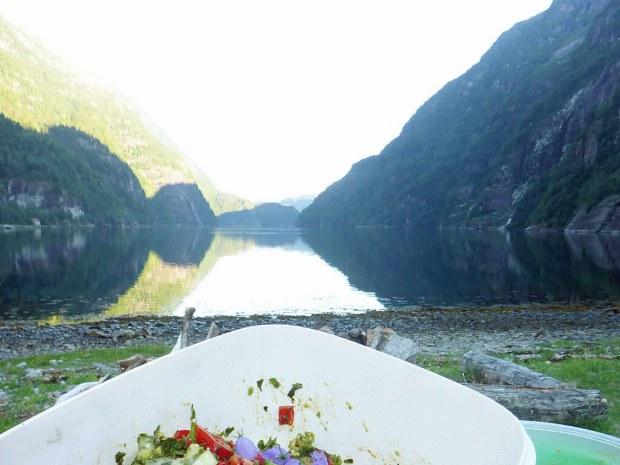 Bunter Salat am Ufer mit Blick auf den Fjord